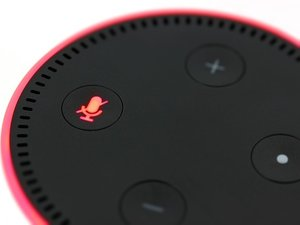 Alexa Now Makes It Easy To Donate To Charity